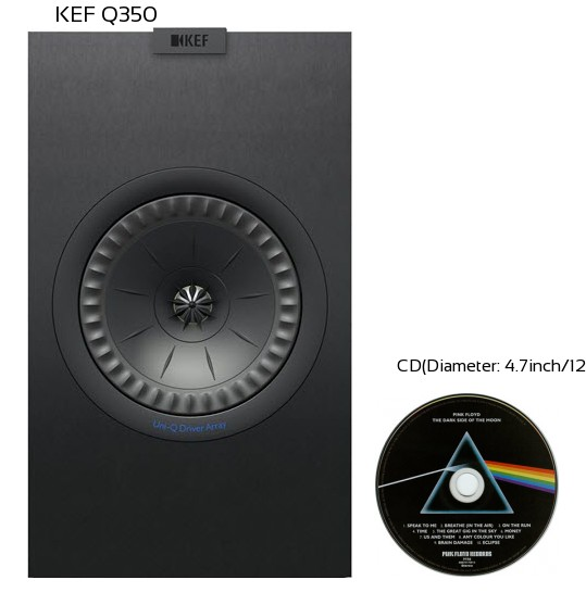 KEF Q350 Real Life Body Size Comparison